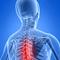 Az ortopédiáról